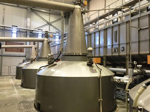 もろみを蒸留する蒸留器がズラリと並ぶ。