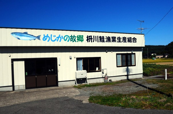 枡川鮭漁業生産組合の事務所。