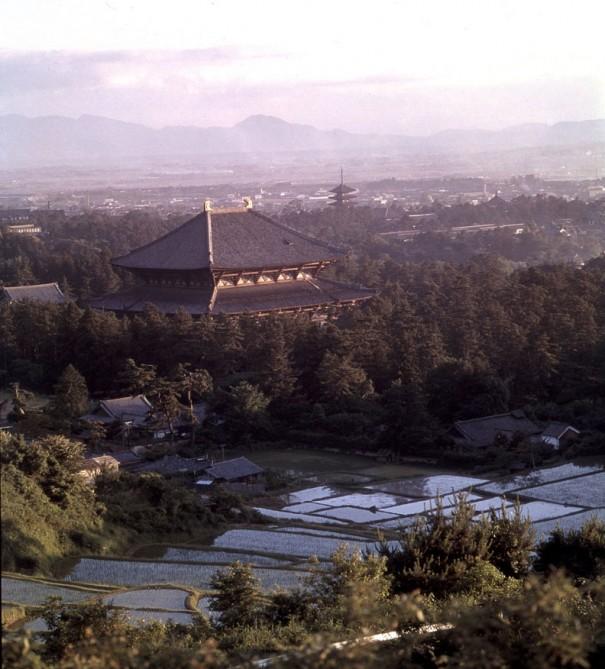 「大仏殿遠望」。屋根の鴟尾(しび)が陽の光を受けキラキラと輝く。右後方は興福寺の五重塔。(1957年)