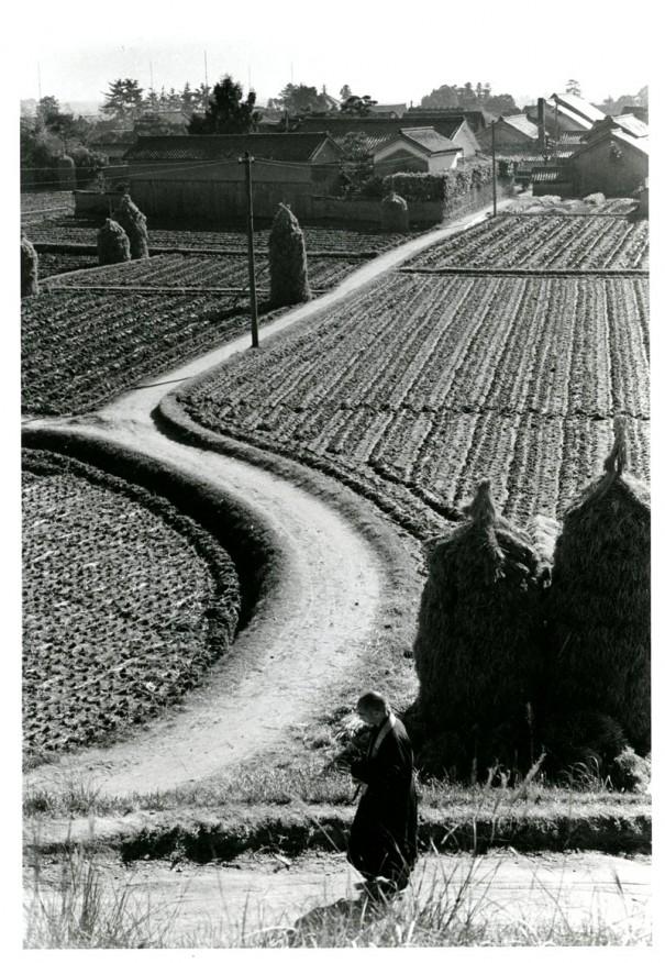 「斑鳩の道」。入江のモノクロにはしばしば画面奥へと延びる道が登場する。(1953年頃 *)(*は展示作品)
