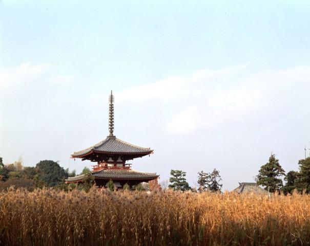 「法輪寺三重塔」。昭和40年の再建。寺の創建は推古天皇30年(622)説と天智天皇9年(670)説がある。(1985年)