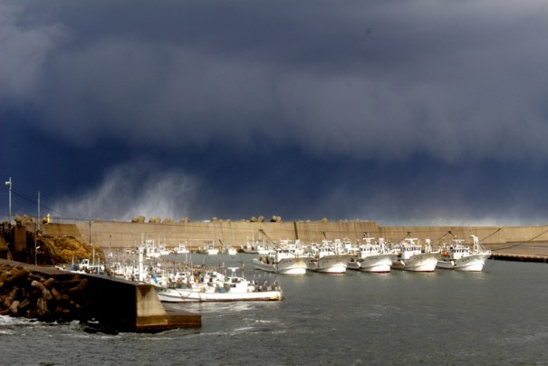 海が荒れて、間人漁港に停泊中の5艘のカニ漁船。