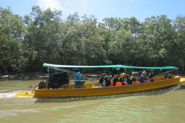 ボートに乗ってマングローブの森へ。