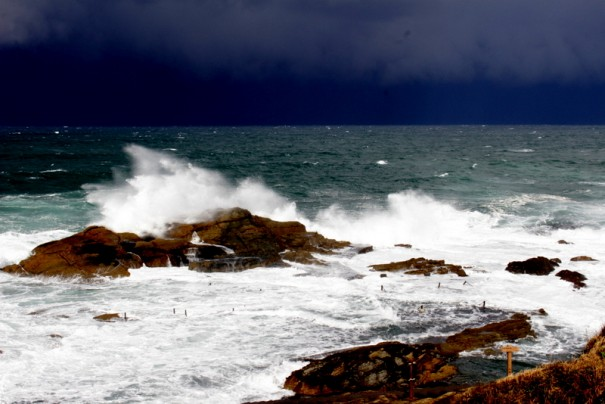 どんよりとした空と砕ける白い波が日本海の厳しさを伝える。