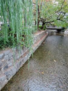 京都の木屋町通り沿いに流れる高瀬川。江戸期に、京の中心部と伏見とをつなぐ物流のための運河として掘削されたのが原点。