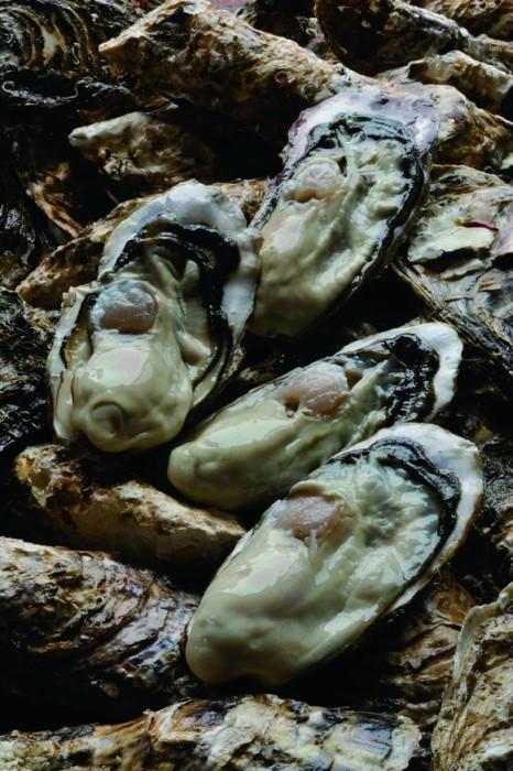 0105ひとくちでは食べられない大きな身。わたの部分は練乳のように濃厚な味で、貝柱もその存在がしっかり感じられるほど大きく甘い。舌に残る海のミネラルの余韻も印象的だ。