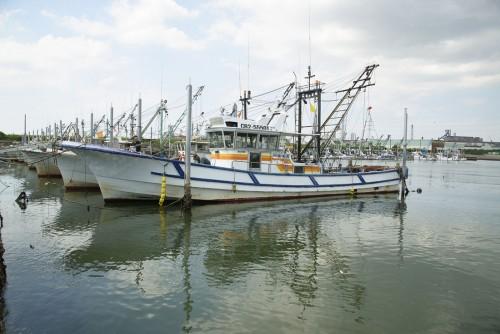 小さな漁船が集まる小糸川漁港。