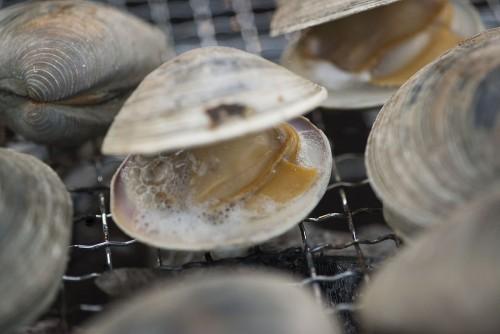 東京湾で獲れたホンビノスの貝焼きなど、テラスではバーベキュースタイルの料理も提供。