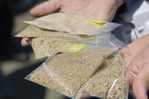飼料に使われる様々な穀物。成長具合によっても配合は変わるという。