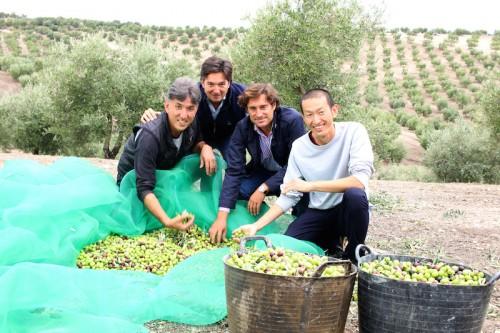 井上誠耕園の3代目園主・井上智博さん(左端)と 搾油責任者・大坪さん(右端)、 スペインのオリーブ農家・ルケファミリーのラファエルさん(中左)と マニュエルさん(中右)