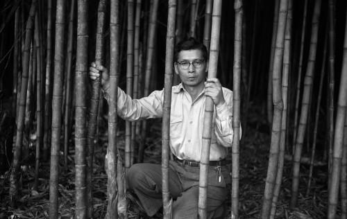 セルフポートレイト:富田農園の竹林にて、パラナ州ロンドリーナ、1953年(C)Haruo Ohara / Instituto Moreira Salles collection