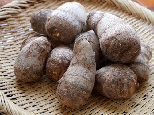 里芋は、沖縄では「チンヌク」と呼ばれます。冬至に食べる炊き込みご飯には、この里芋や田芋を入れます。