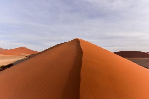 砂丘の頂上。