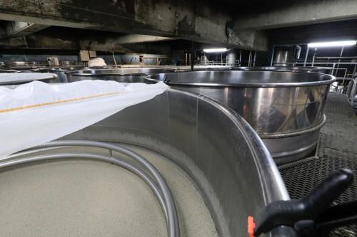 仕込みタンクに麹、水、酵母を入れて発酵させます。発酵が始まると、ぶくぶくと泡が湧き上がってきます。このもろみが熟成するまでに2週間ほどかかります。