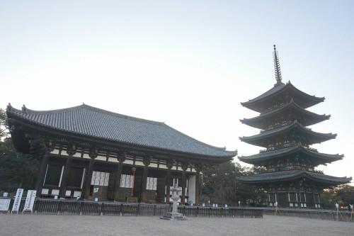 興福寺五重塔&東金堂
