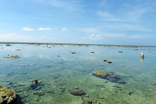 旧暦の3月3日の「浜下り(ハマウリ)」では、潮干狩りを楽しむ。