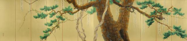 下村観山《老松白藤》1921(大正10)年 紙本金地・彩色 【伏見宮家旧蔵品】山種美術館蔵