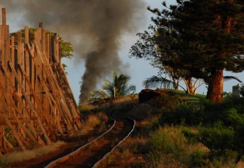 フラになったマウイの鉄道