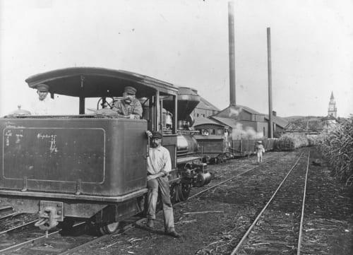 ワイルク製糖工場とカフルイ鉄道、wikipedia