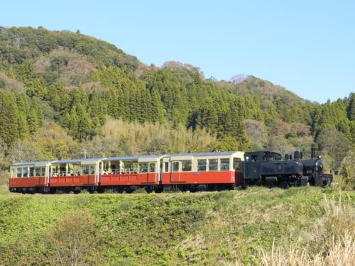 観光列車「里山トロッコ」