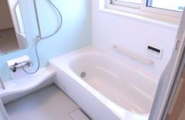 温泉療法専門医が太鼓判|もっとも優れた健康法は「入浴」