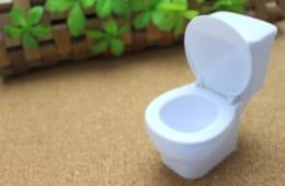 夜起きてのトイレは「寿命が縮まるサイン」?! 快尿を実現する方法とは?