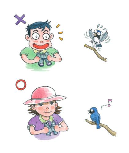 薄目(半眼)あるいは帽子のつば越しに鳥を見るとより近づける