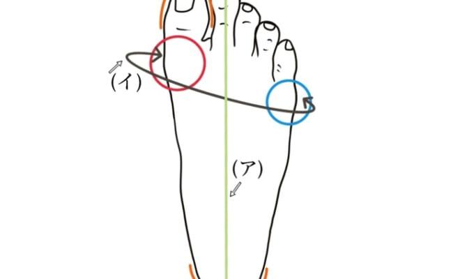 下図の(ア)は足長、(イ)は足囲を示しています