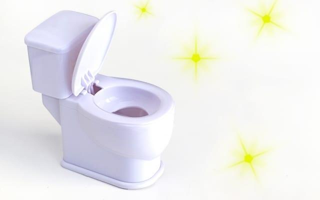 社長のパワーアップ・ゲン担ぎ|自らトイレ掃除をする社長が7割!その半数以上が業績アップして いることが判明!
