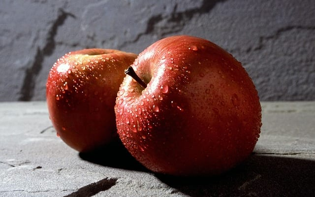 【ビジネスの極意】織田信長タイプのジョブズか、徳川家康タイプのクックか?|アップルに学ぶ理想のリーダーシップ