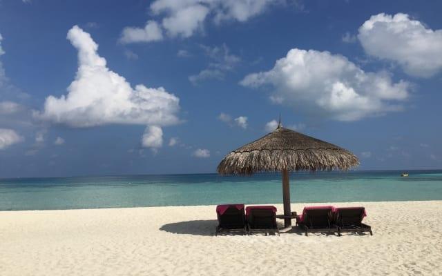 年末年始に夫婦げんか約3割! 休暇2~3日目に息抜きで円満?|長期休暇の過ごし方に関する調査