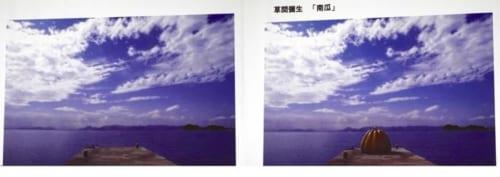 芸術作品が置かれると、そこ景色に意味が現れ、見る人に、背景について問いかけてくる例として、草間彌生「南瓜」を紹介した