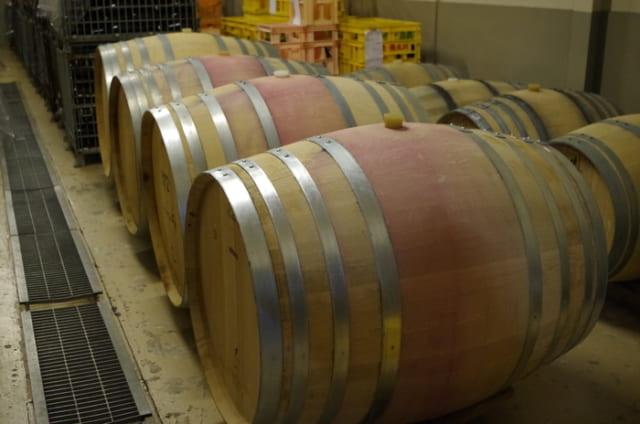 古木シリーズのマスカット・ベーリーA、カベルネ・ソーヴィニヨン、メルローなどの赤は228L や500Lの樽で熟成させる。