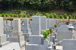 お墓の費用 約5割が150万円以下で購入、購入前に知っておきたいのはお墓の管理法|「お墓購入」に関する実態調査