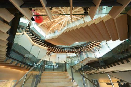 木のぬくもりが感じられる美しい建物の中には展示エリアやラウンジスペースがありますよ。
