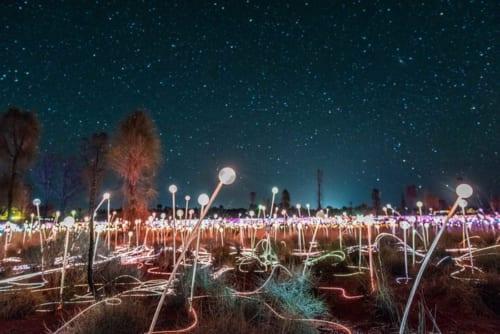 夜空の星々とイルミネーションが幻想的な風景を作り出す