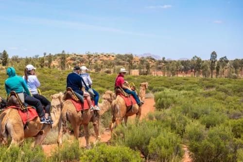 ラクダの背に揺られながら、国立公園を巡るツアー