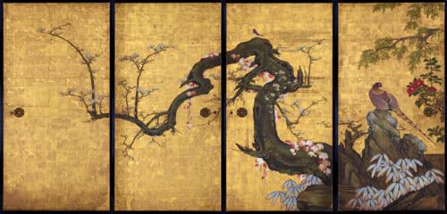 狩野山雪 《梅花遊禽図襖》 紙本金地着色 四面 各184.0×94.0cm 寛永8年(1631) 京都・天球院