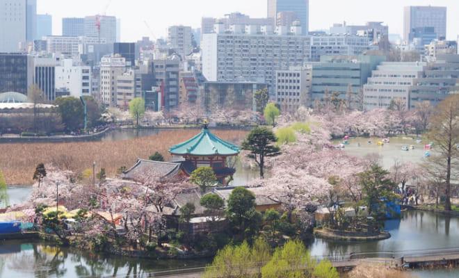 1位:上野恩賜公園【東京都】