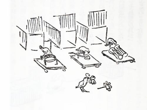 一羽ずつ違う楽器を使った合奏芸