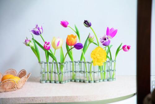 パリのポンピドゥセンターのパーマネントコレクションに加えられているという「四月の花器」。試験管は可動式で、自由に形を変えられて円形にすることもできます。茎が短いものや折れてしまったものをランダムに挿してみました。