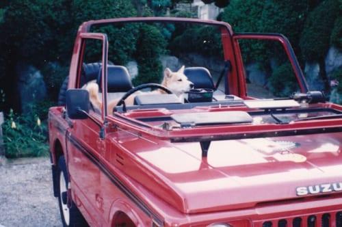 17年前、在りし日の愛犬と愛車を写した思い出の1枚。クルマの思い出は、哲也さんの送った半生の思い出と深く結びついています。