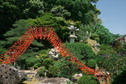 堂内の日本庭園には1000個の赤富士風鈴も。こちらを拝観した方には、暑気払いとして「水無月ぜんざい」(7月8日から8月末日まで毎日先着100名限定)が用意されています。