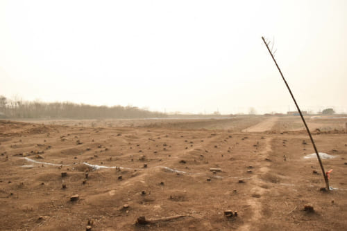 土が一面に広がる内城跡の外。始皇帝の時代はどのような姿だったのだろうか