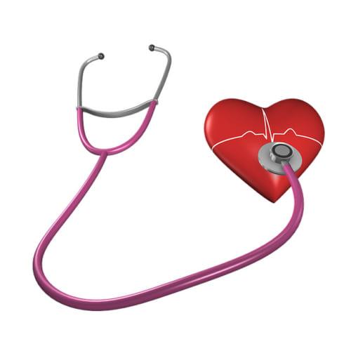 暑さに弱い臓器「心臓」|新たに注目を集める心臓病のリスク「酸化変性LDLコレステロール」とは