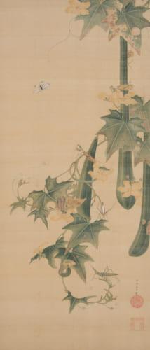 《糸瓜群虫図》江戸中期