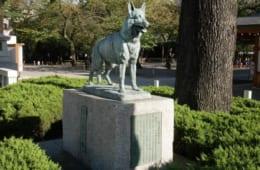 蜂・ムカデ・ゴキブリまで⁉ 供養碑に見る日本人の動物愛護