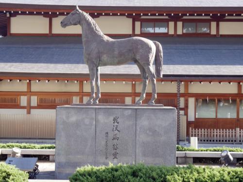 軍馬慰霊塔は全国各地で見ることができます