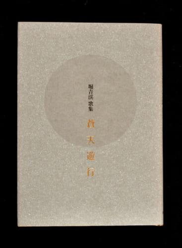 堀澤さんの歌集『蒼天遊行』。「堀青渓」はペンネーム。