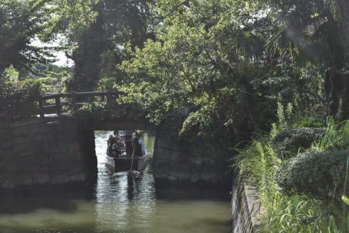 生活用水のみならず観光面でも支えている掘割は、柳川での暮らしに欠かせない存在